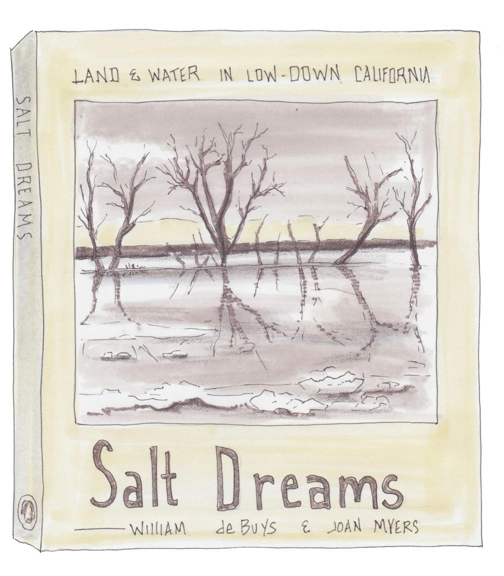 salt dreams no back